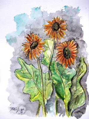 african daisy flower watercolor painting