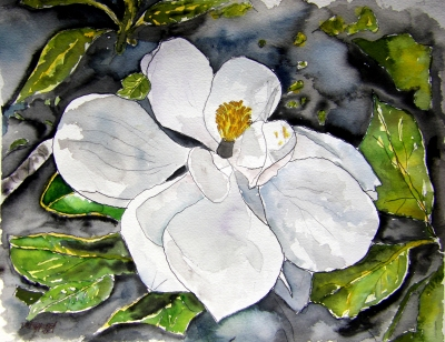 magnolia flower still life painting